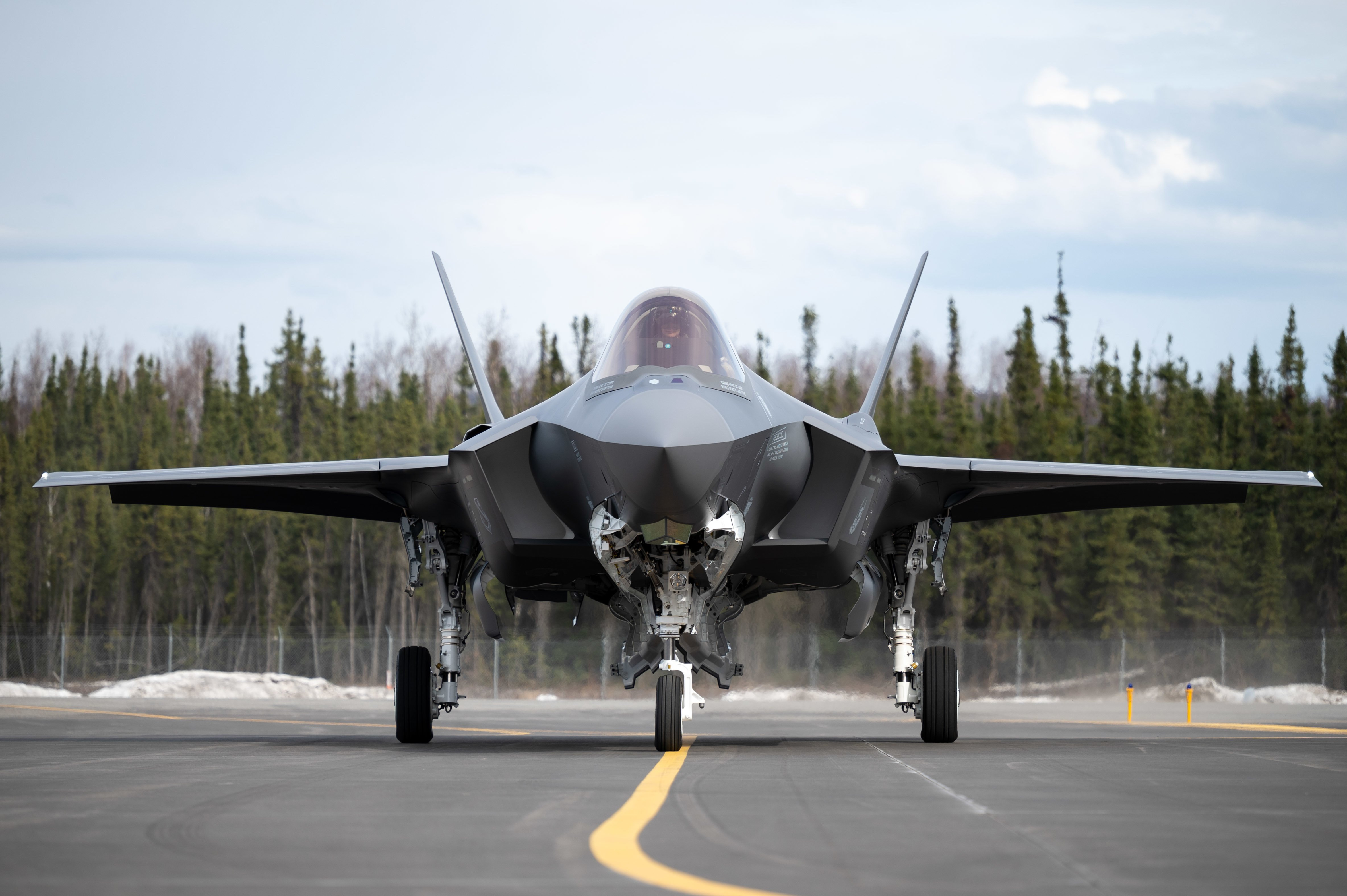 First F-35A for 355th FS [USAF/Airman 1st Class Jose Miguel T Tamondong]